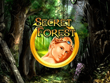 Отзывы о автомате Secret Forest