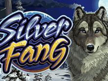 Silver Fang от Microgaming – слот в виртуальном казино