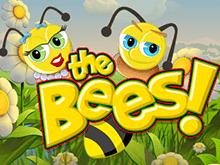The Bees – на игровом портале азартная игра от Betsoft