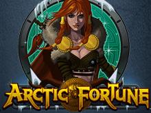 Арктическая Фортуна от Microgaming – играйте онлайн
